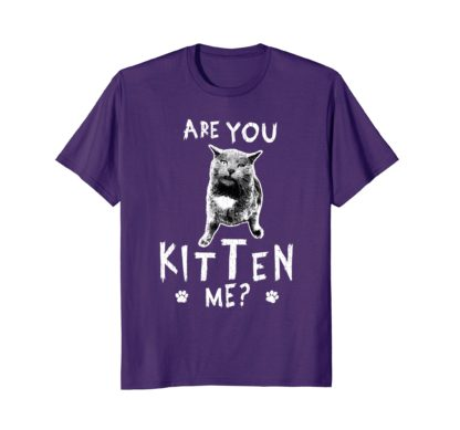 Funny Cat Lovers Women Men T Shirt | Are You Kitten Me?